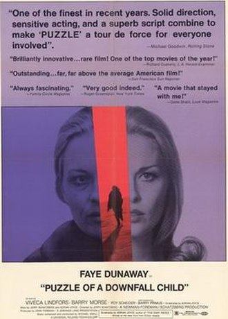 Puzzle of a Downfall Child - Original film poster