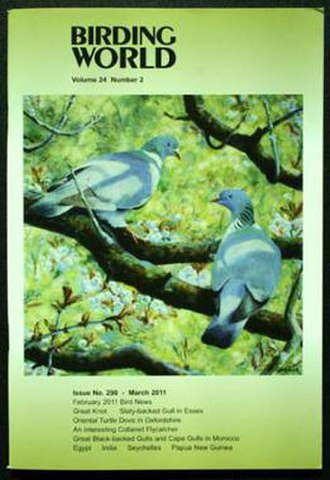 Birding World - March 2011 cover