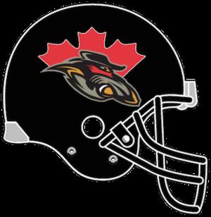 Ottawa Renegades - Image: Ottawa Renegades helmet 2002 2005