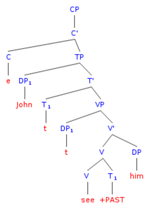 """Bound variable pronoun - Image: Syntax tree of the sentence """"John saw him"""", adapted from Higginbotham (1980)"""