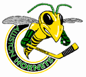 Alliston Hornets.png