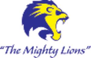 Auckland Lions - Image: Auckland Lions