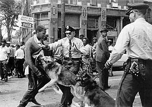 A black and white photograph of a black male teenager being held by his sweater by a Birmingham policeman and being charged by the officer's leashed German Shepard while another police officer with a dog and a crowd of black bystanders in the background look on