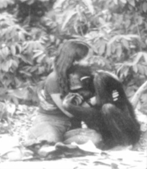 Lucy (chimpanzee) - A famous picture of Lucy Temerlin and her caretaker Janis Carter hugging about a year before Lucy's death