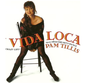 Mi Vida Loca (My Crazy Life) - Image: Pam Tills Mi Vida single