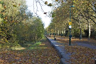 Russia Dock Woodland - View of Russia Dock Path from Onega Gate