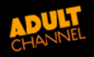 Home Video Channel - Image: The Adult Channel