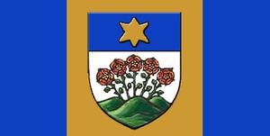 Wetaskiwin - Image: Wetaskiwin flag