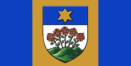 Flag of Wetaskiwin