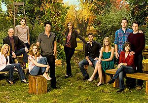 Brothers & Sisters (season 4) - Main cast of season four.
