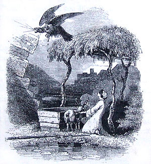 Math fab Mathonwy (branch) - Lleu rises in the form of an eagle. Image from The Mabinogion, Charlotte Guest, 1877.