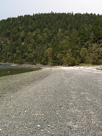 Galiano Island - The view north along the shores of Shell Beach. The white of the shells can be seen in the distance.