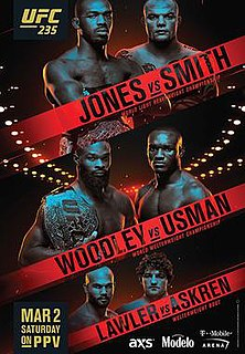 UFC 235 UFC mixed martial arts event in 2019
