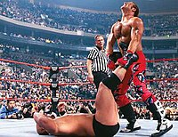 Stone Cold Steve Austin vs. Shawn Michaels for the WWF Championship