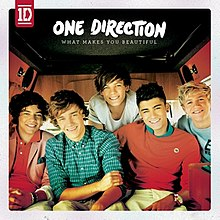What Makes You Beautiful Album Cover.jpg