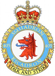 403 Helicopter Operational Training Squadron