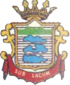 Coat of arms of Subiaco
