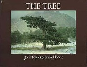 The Tree (book) - First edition