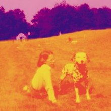 A photo of a little girl sitting on the ground outside in a farm paddock with a Dalmatian dog. The girl, the dog and the ground are orange in color while the trees and sky in the background are purple.