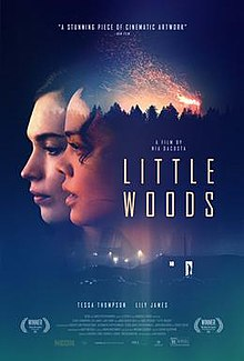 Little Woods film.jpeg