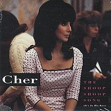 Cher-the-shoop-shoop-song-promo-usa.JPG