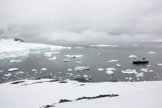 Cuverville Island - Cuverville Island, December 2014