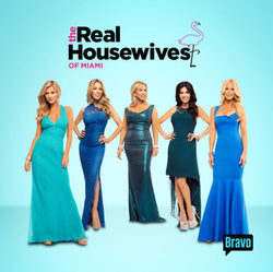 The Real Housewives of Miami Season 2 Episode 1
