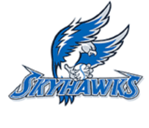 Sussex Skyhawks - Image: Skyhawks