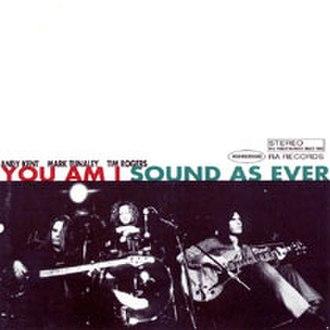 Sound as Ever (You Am I album) - Image: Soundasever