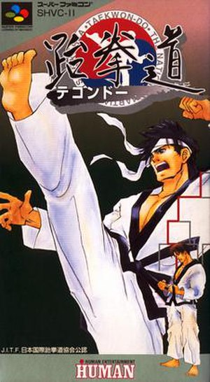 Taekwon-Do (video game) - Taekwon-Do