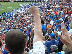 The crowd at the Swamp is loud. involved, and close to the action