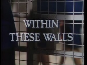 Within These Walls - Image: Within These Walls Intertitle