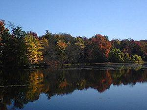 Glenmere Lake - Glenmere, October 2008