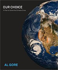 Our Choice book cover.JPG
