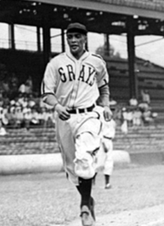 Ray Brown (Negro leagues pitcher) American baseball player