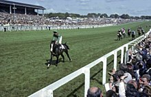 The home stretch of the 1981 Derby with Shergar about ten lengths ahead of the other horses