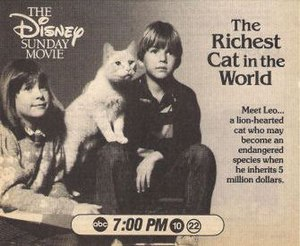 The Richest Cat in the World - Print advertisement