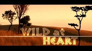 Wild at Heart (UK TV series)