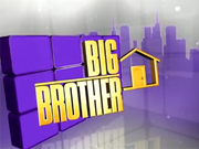 Big Brother 14 Logo.png