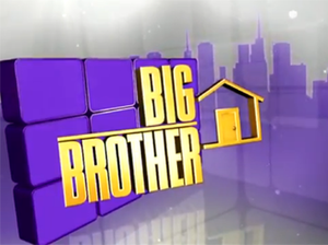 Big Brother 14 (U.S.) - Image: Big Brother 14 Logo