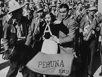 Peruna - Bob Hope and Gracie Allen meet Peruna II at the Mustangs' appearance in the 1935 Rose Bowl.