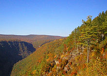 A deep gorge lies in shadows at left. The gorge and its surroundings are covered by trees, most with red, orange and yellow leaves. Some green confiers and rocky ledges are in the foreground at right.