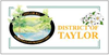 Flag of District of Taylor