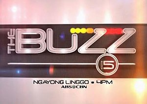 The Buzz (talk show) - The final logo of The Buzz