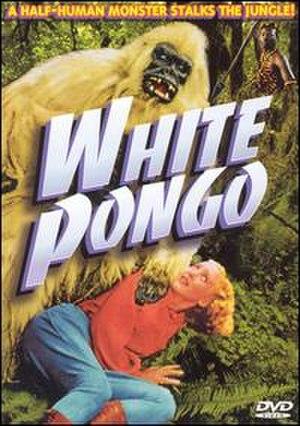 White Pongo - Image: White Pongo
