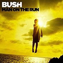 Bushmotr.jpg