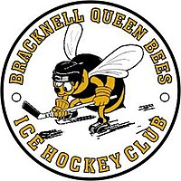 Queen bee logo.jpg