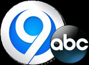 WSYR-TV - Image: WSYR 2013 Logo