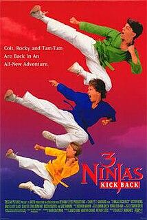 <i>3 Ninjas Kick Back</i> American film directed by Charles T. Kanganis