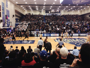 "Georgia State Panthers men's basketball - ""Black Out"" game against Georgia Southern in the GSU Sports Arena on Jan. 19, 2016"